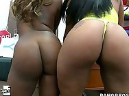 Phat ass booty -  Black phat asses of Tori Taylor and Carmela Mulatto